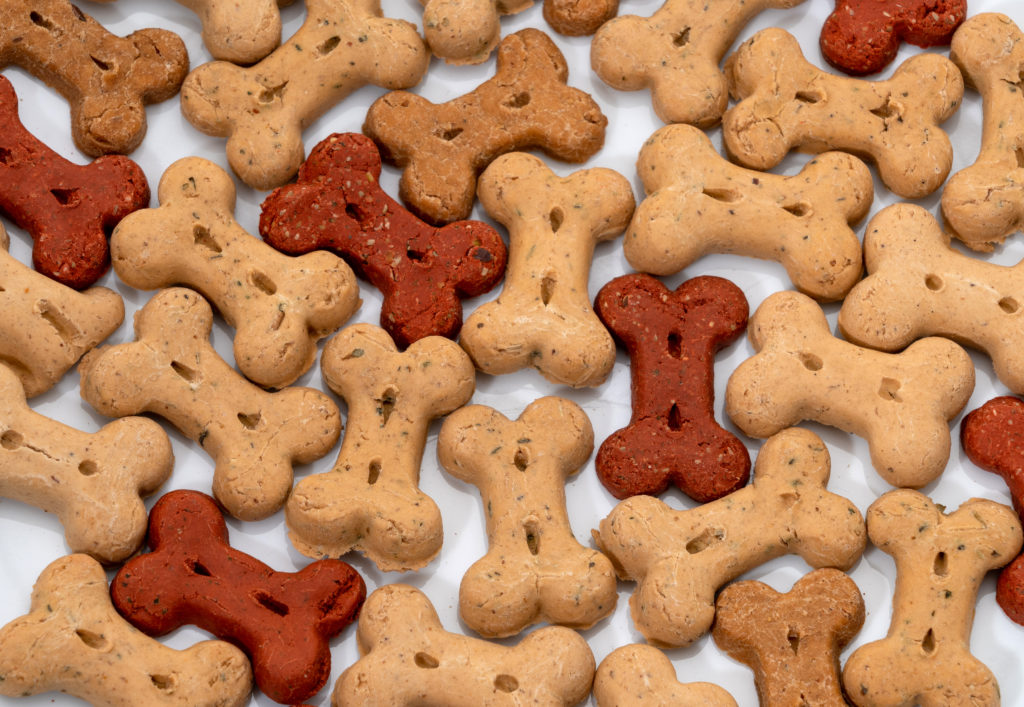 Multi-color dog treats over a white background